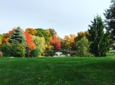Fall foliage at Fairfield University, Alumni Weekend, October 2015